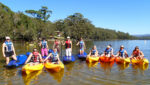 People With Life Jackets On Seated In Yellow Kayaks And Kneeling On Paddle Boards In A Row On The Water With Bush In The Background