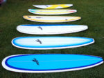 Surfboard Hire Different Coloured Surfboards Laying Down In A Row On Grass
